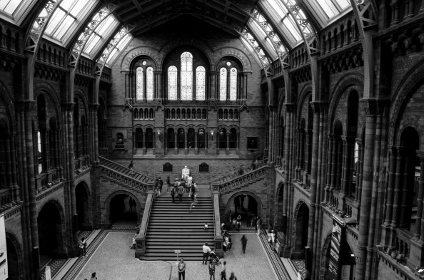 National History Museum B&W