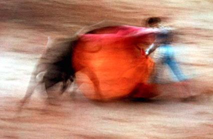 Haas_bullfight_425