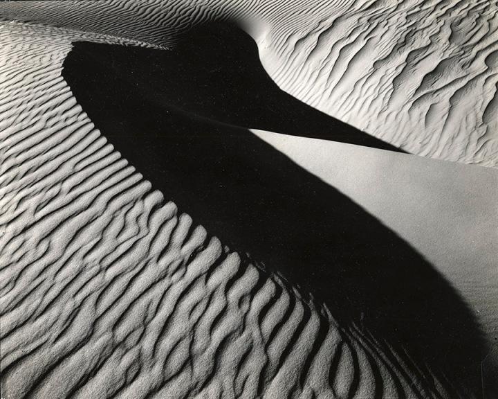 Dune-1934-printed 1980 by Brett Weston