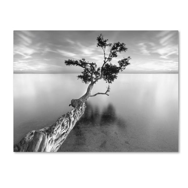 Moises-Levy-Water-Tree-XIII-Canvas-Art-0c8a45af-f1d8-4db0-84a8-29176f242405_600