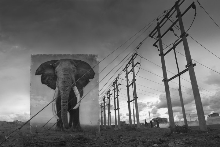 Monday's Photography Inspiration – Nick Brandt's INHERIT THE DUST