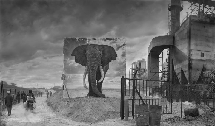 FACTORY-WITH-ELEPHANT