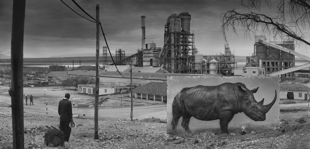FACTORY-WITH-RHINO