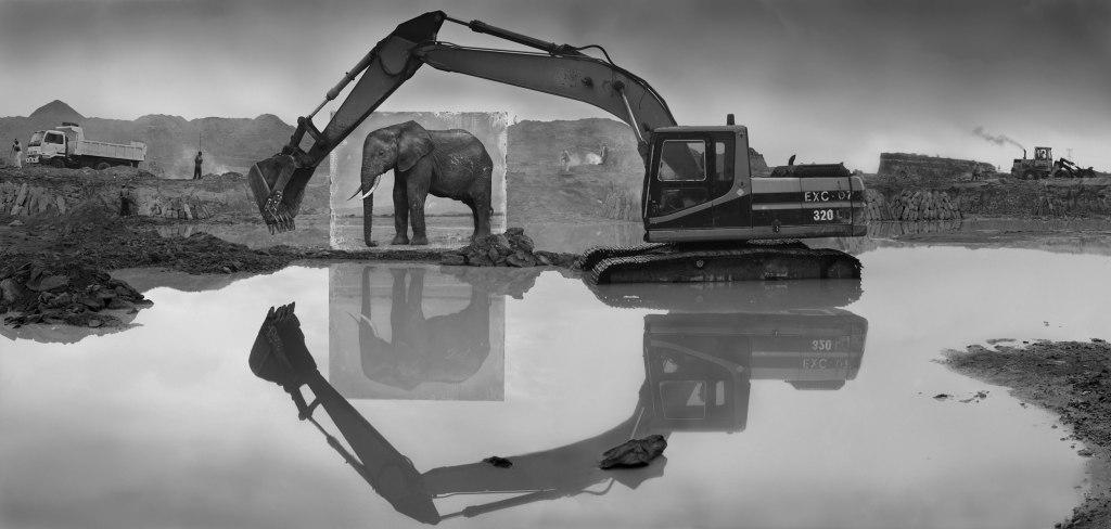 QUARRY-WITH-ELEPHANT