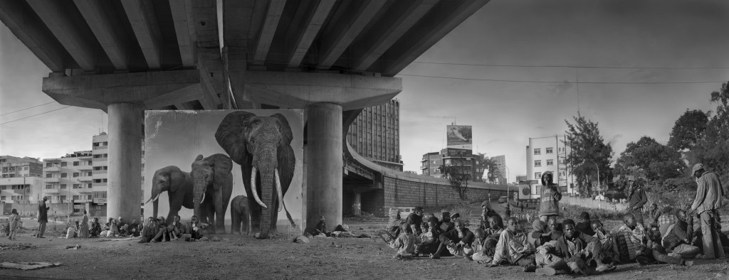 UNDERPASS-WITH-ELEPHANTS-and-GLUE-SNIFFING-CHILDREN