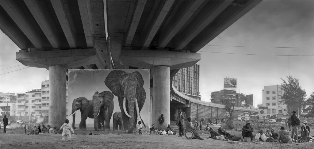 UNDERPASS-WITH-ELEPHANTS