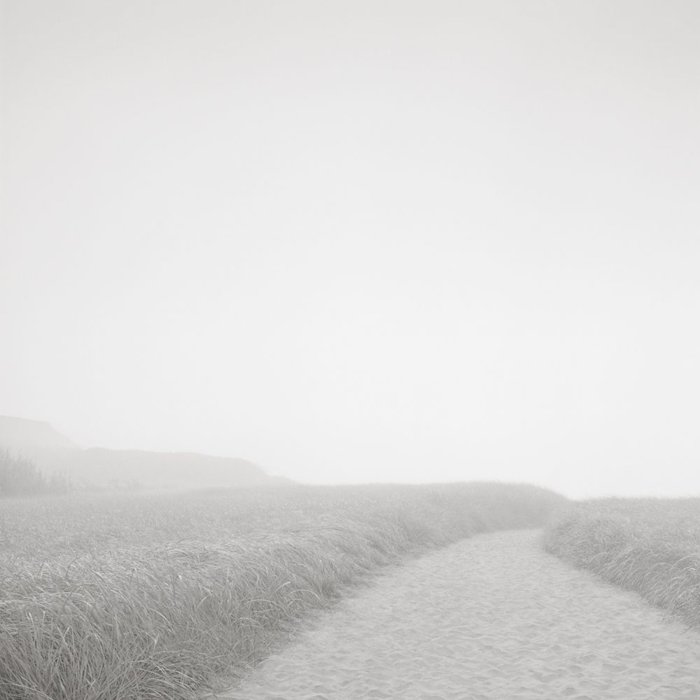 david-fokos-beach-path