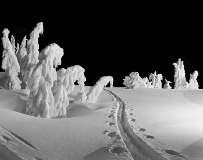 5878A Night Tracks Timberline Lodge Mt Hood Oregon