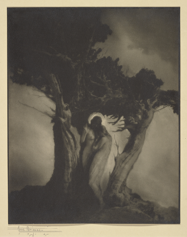 Monday's Photography Inspiration – Anne Brigman
